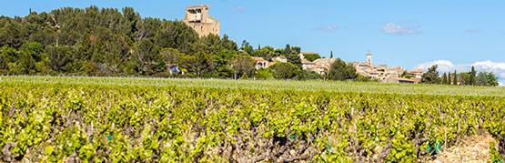 Best of Rhône