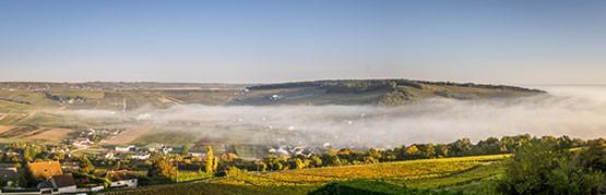 Best of Loire