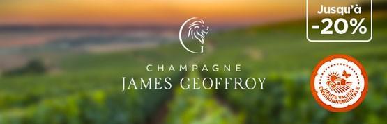 Rapport prix-plaisir inédit avec ce Champagne à moins de 17€