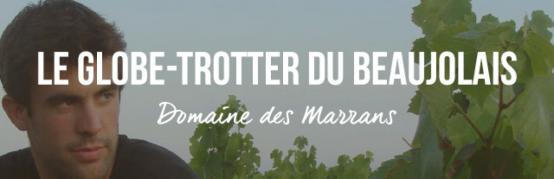 Domaine des Marrans