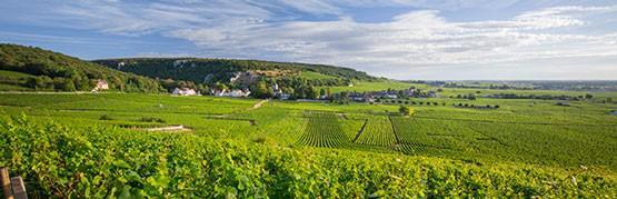 Best of Bourgogne