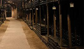Tout savoir sur la conservation du Vin