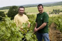 Domaine Pierre-Yves & Olivier Fichet