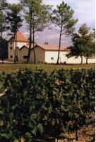 Château Lafon (Listrac-Médoc)