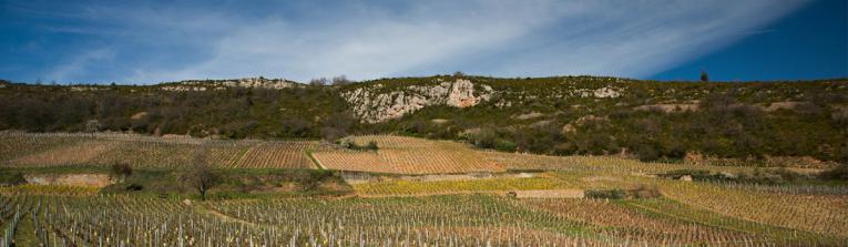 Acheter les vins de Minho, Portugal