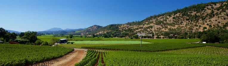 Acheter les vins de Californie, Etats-Unis