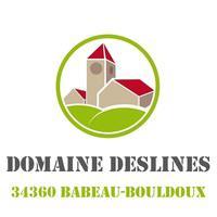 DOMAINE DESLINES