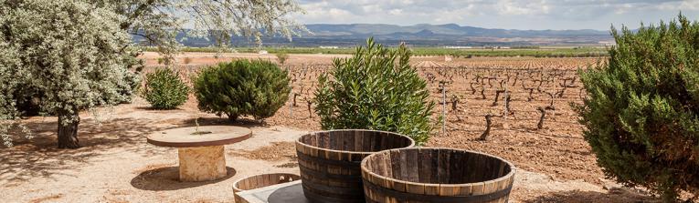 Acheter les vins de Castilla y Leon, Espagne