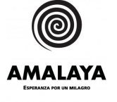 Bodegas Amalaya