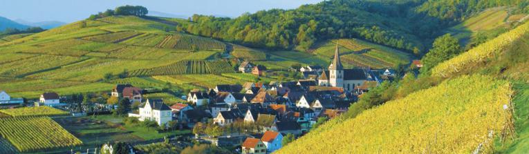 Acheter les vins de Alsace, France