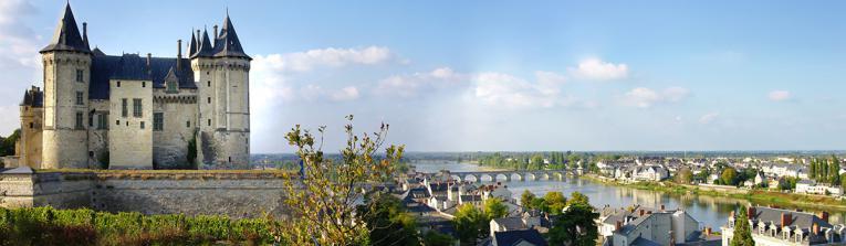 Acheter les vins de Vallée de la Loire, France