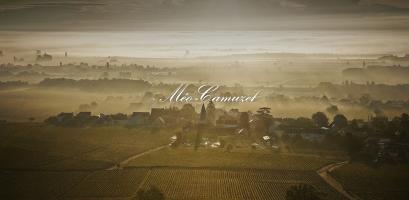 Domaine Méo-Camuzet