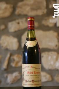 St Romain - Domaine Clos du Vieux Chateau des Ducs - 1973 - Rouge