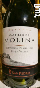Sauvignon Blanc Reserva - Castillo de Molina - 2012 - Blanc