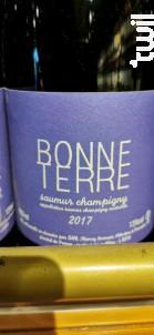 Bonne Terre - Thierry Germain - Domaine des Roches Neuves - 2017 - Rouge