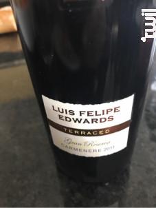 Luis Felipe Edwards Carmenere - Luis Felipe Edwards Estate - 2011 - Rouge