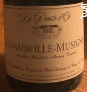 Chambolle-Musigny - Domaine de la Pousse d'Or - 2015 - Rouge