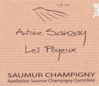Les Poyeux (1blle Pour 3 Autres) - Domaine Antoine Sanzay - 2016 - Rouge