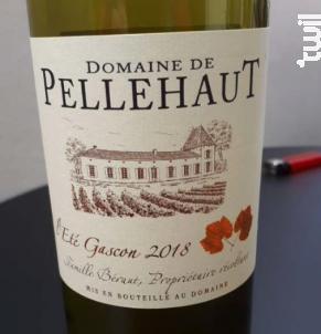 L'Été Gascon - Domaine de Pellehaut - 2018 - Blanc