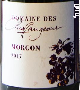 Morgon - Domaine des Chaffangeons - 2019 - Rouge