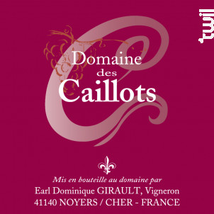 TOURAINE Gamay - Domaine des Caillots - 2016 - Rouge