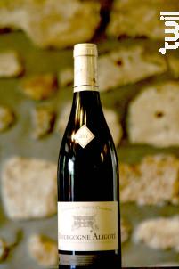 Bourgogne Aligoté - Domaine du Vieux College - 2011 - Blanc
