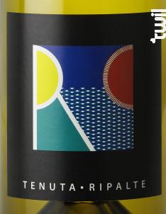 Bianco - Fattoria Delle Ripalte - 2013 - Blanc