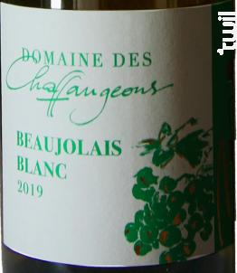 Beaujolais Blanc - Domaine des Chaffangeons - 2019 - Blanc