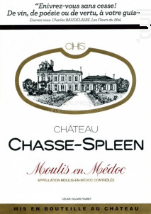 Château Chasse-Spleen - Château Chasse-Spleen - 2017 - Rouge
