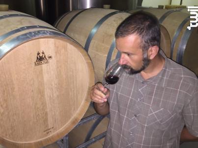 Château ROZIER-MORILLONS - Cuvée l'Esquisse - Vignobles Crachereau - 2005 - Rouge