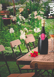 Grand Rosé - Champagne Gosset - Non millésimé - Effervescent