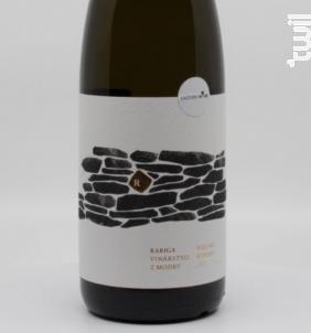 Rariga - Rizling Rynsky - Rariga - 2017 - Blanc