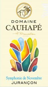 Symphonie de Novembre - Domaine Cauhapé - 2017 - Blanc