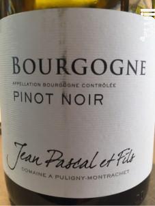 Bourgogne - Pinot Noir - Domaine Jean Pascal et Fils - 2016 - Rouge