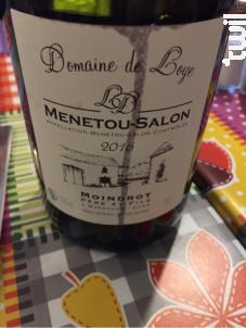 Menetou-Salon - DOMAINE DE LOYE - 2016 - Rouge