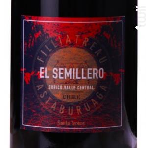 EL SEMILLERO - Domaine Filliatreau - 2014 - Rouge