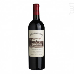 Château Picque Caillou - Château Picque Caillou - 2018 - Rouge