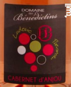 Cabernet d'Anjou - Domaine des Bénédictins - 2019 - Rosé