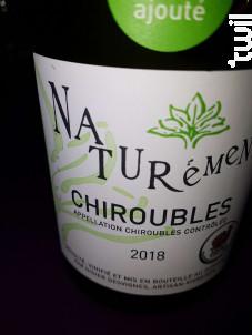 Nature Chiroubles - Domaine Didier Desvignes - Non millésimé - Rouge