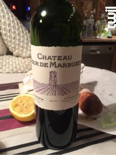 Château Tour de Marbuzet - Château Haut-Marbuzet - 2016 - Rouge