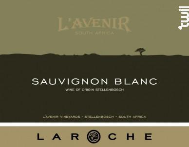 Sauvignon Blanc - Domaine de l'Avenir - 2004 - Blanc
