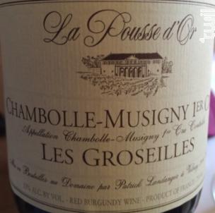 Chambolle-Musigny Premier Cru  Les Groseilles - Domaine de la Pousse d'Or - 2014 - Rouge
