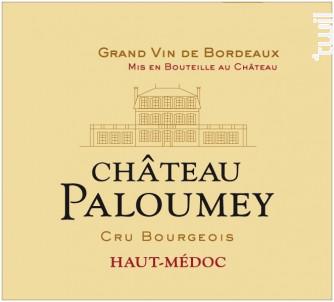 Château Paloumey - Vignobles Paloumey- Château Paloumey - 2015 - Rouge