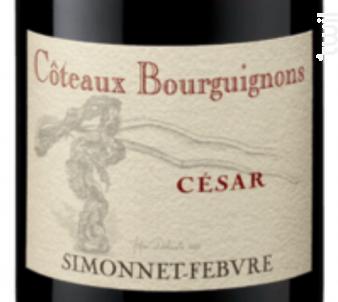 Coteaux Bourguignons César - Simonnet Febvre - 2015 - Rouge