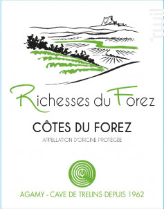 Richesse du Forez - Louis Tête - 2019 - Rosé