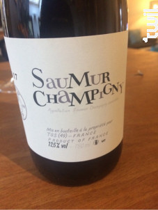Saumur-Champigny - Thierry Germain - Domaine des Roches Neuves - 2017 - Rouge