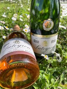Crémant Lateyron ROSE - Château Tour Calon - Non millésimé - Rosé