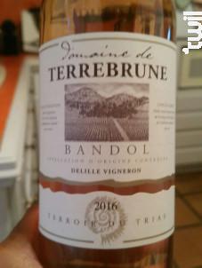 Domaine de Terrebrune - Bandol - Domaine de Terrebrune Bandol - 2016 - Rosé