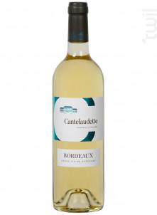 Blanc Tradition - Château  Cantelaudette - 2020 - Blanc