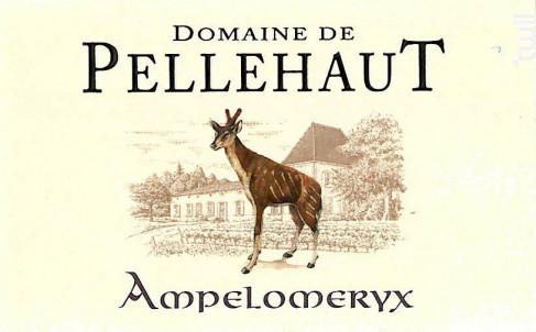 L'Ampélomeryx - Domaine de Pellehaut - 2018 - Rouge
